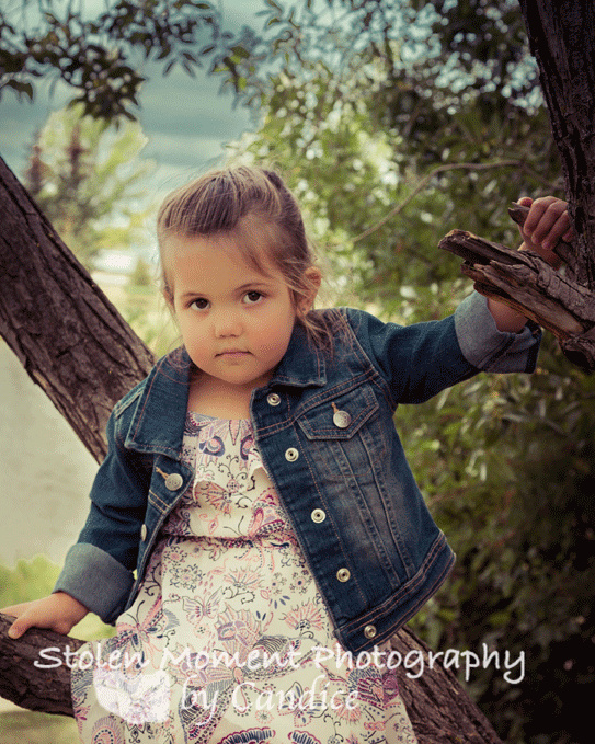 little girl in tree with shy smile at camera