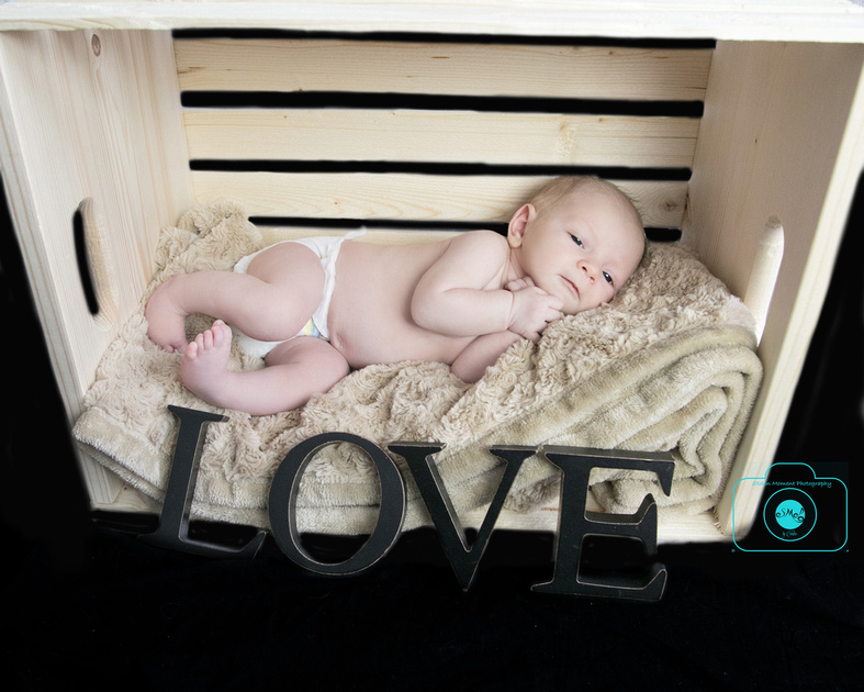 newborn girl lays in a crate turned on its side with the words love in block letters in front of baby