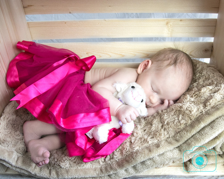 newborn girl lays in a crate turned on its side and clutching a little white lamb while sleeping