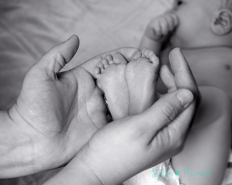a beautiful newborn boy with his mom, dad, big sister and big brother in the studio