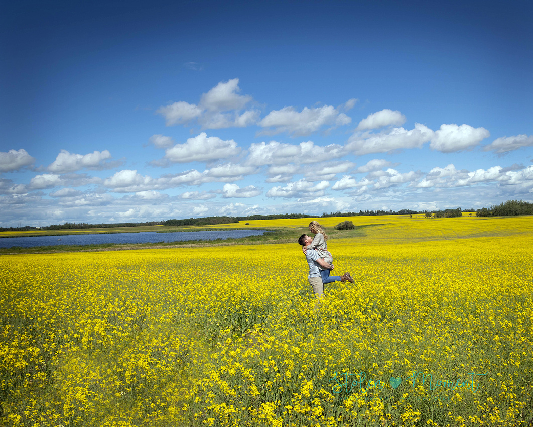a country engagement session at a farm inside the Edmonton city limits with lots of canola fields