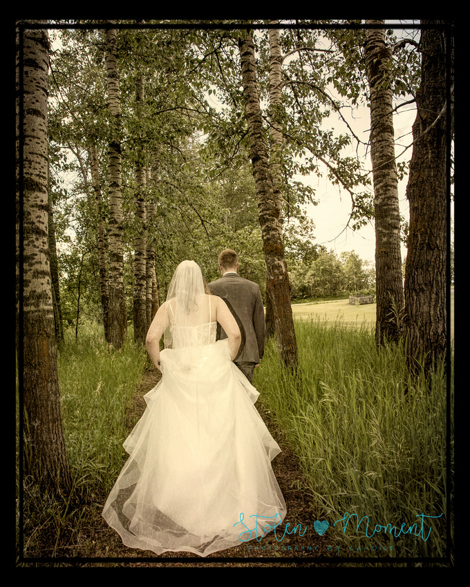 the bride and the groom walk through a forest of threes