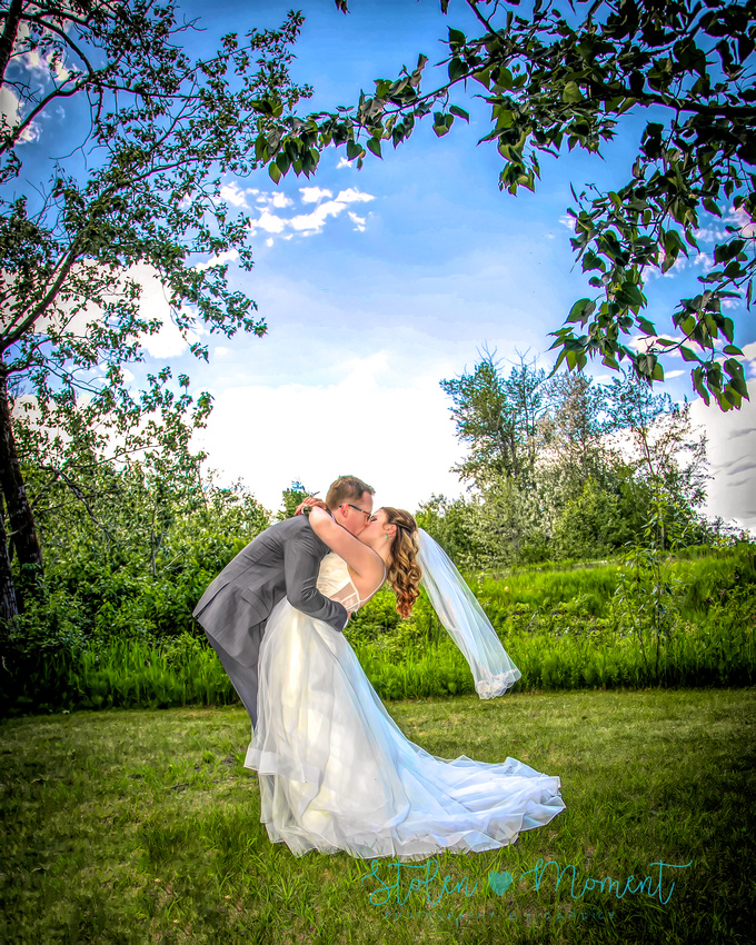 the groom bends over the bride who leans back as they share a kiss in a field of green with blue sky and trees overhead