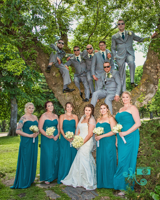 groom and groomsmen in a tree with the bride and bridesmaids at base of tree